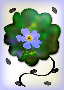 Grafika - Kvety v kvete (nezábudka) - 10863406_