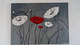Obrazy - Kvety black & white & red - 10868098_