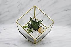 Nádoby - Vitrážové rastlinné terárium so sukulentmi - 10875471_