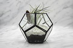 Nádoby - Vitrážové rastlinné terárium s tillandsiou - 10875584_