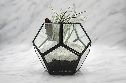 Vitrážové rastlinné terárium s tillandsiou