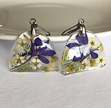Náušnice - Náušnice lúčne kvety ostrôžka poľná/ ZO1 - 10886315_