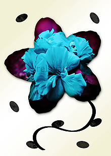 Grafika - Kvety v kvete (morské vlny) - 10886632_