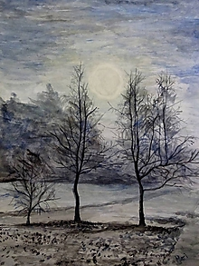 Obrazy - medzi stromami - 10893964_