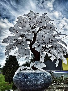 Dekorácie - Biela bonsaj - 10894079_