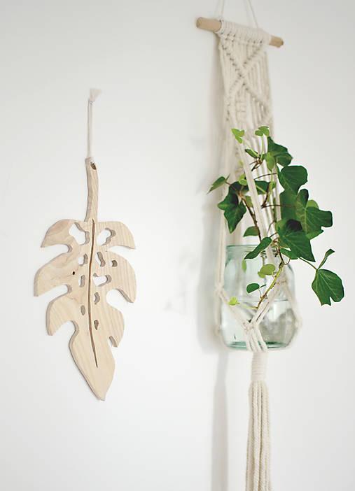list rastliny