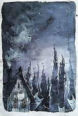 Obrazy - biela polnoc - 10895350_