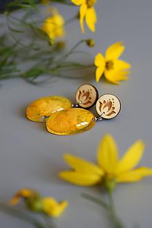 Náušnice - Náušnice Žltý iskerník ováliky 2634 A CHO - 10899681_