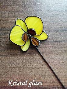 Dekorácie - Orchidea - 10901992_