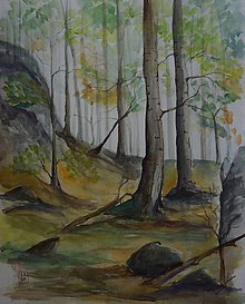 Obrazy - Suchý vrch - 10902307_