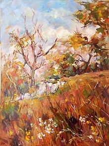 Obrazy - Prechádzka pod lesom - 10907583_