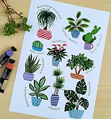 Kresby - Art-print Plagát s rastlinami  A4 ilustrácia - 10907561_