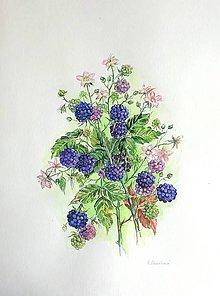 Obrazy - Černice - 10909874_