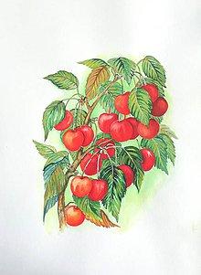 Obrazy - Čerešne - 10909909_