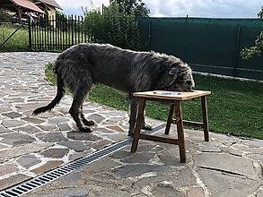 Pre zvieratká - Psí jedálenský stôl - 10910481_