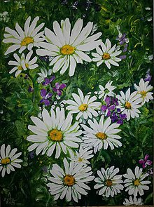 Obrazy - Lúka s margarétkami - 10913514_
