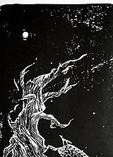 Obrazy - čaro mesačného svitu • LINORYT - 10914833_