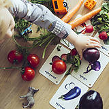 Hračky - Kartičky Zelenina - 10917160_