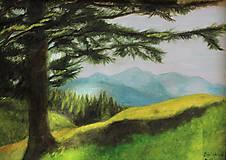 Obrazy - Strom a hory - 10921829_