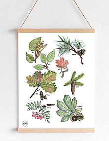Detské doplnky - Art Print - listy - 10932132_