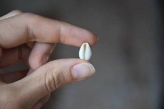 Minerály - 50% Kauri mušla biela s dierkou, z 0.20 na 0.10€/ks - 10930566_