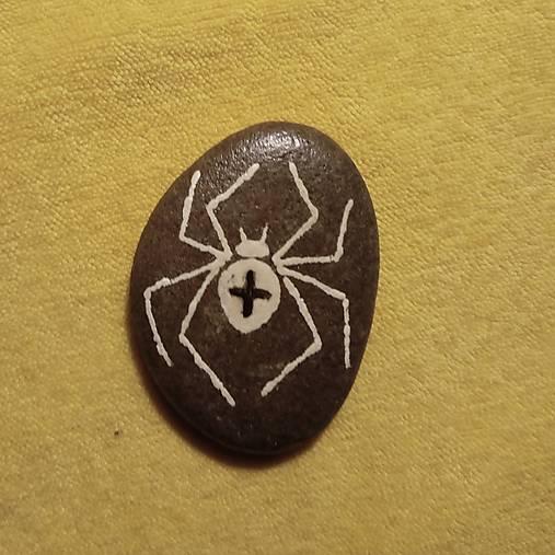 Pavúk križiak- darček k objednávke