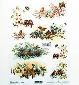 Papier - Ryžový papier na decoupage - A4-R1070 - vtáčiky, jar, kvety - 10940012_