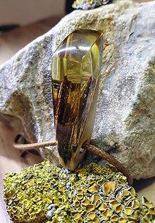 Náhrdelníky - lesný amulet - 10944183_
