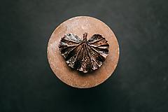 Odznaky/Brošne - Muškát so stopkou brošňa - 10949602_