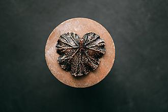Náhrdelníky - Prívesok muškát so stopkou - 10949560_
