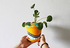 Terakotový kvetináč - Summer mood