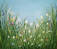 Obrazy - Lúčne kvety - 10959070_
