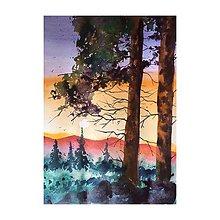 Obrazy - V lese - 10957698_