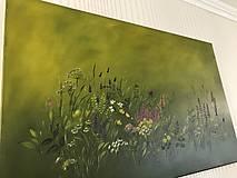 Obrazy - Zelená lúka - 10970113_
