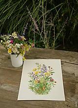Obrazy - Obraz Lúčne kvety (šalvia), akvarel, tlač - 10970935_
