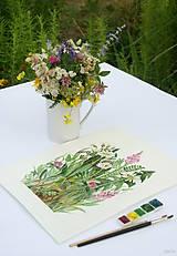 Obrazy - Obraz 3 margaréty + lúčne kvety, akvarel, tlač - 10971010_