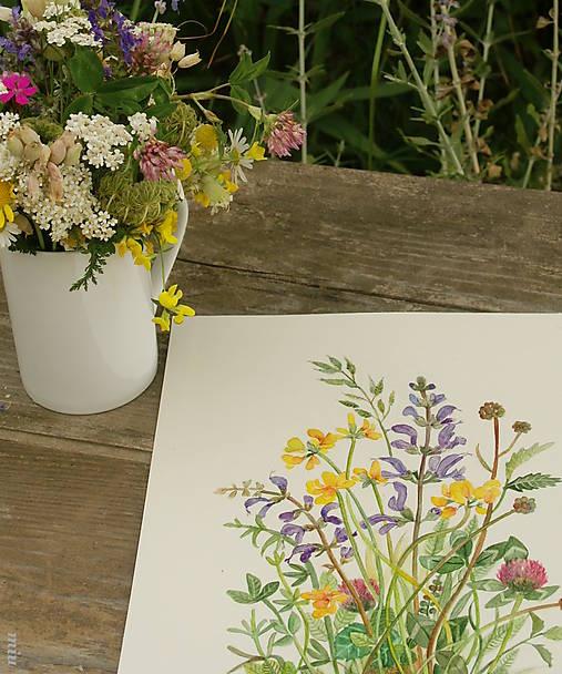 Obraz Lúčne kvety (šalvia), akvarel, tlač