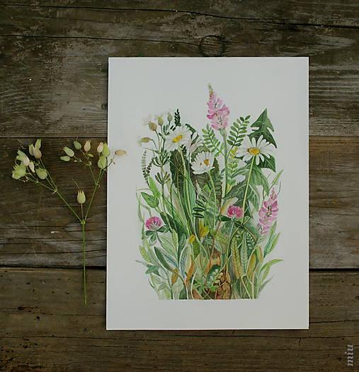 Obraz 3 margaréty + lúčne kvety, akvarel, tlač