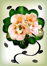 Grafika - Kvety v kvete (marhuľová pena) - 10975695_