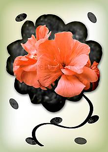 Grafika - Kvety v kvete (marhuľová farba im pristane) - 10975690_