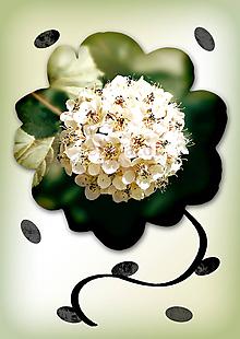 Grafika - Kvety v kvete (skupinka) - 10975691_