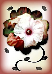 Grafika - Kvety v kvete (kráľovná noci) - 10975702_