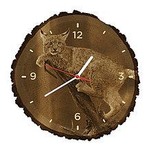Hodiny - Drevené hodiny Rys ostrovid (Biele ručičky) - 10983806_