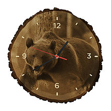 Hodiny - Drevené hodiny Medveď hnedý (Čierne ručičky) - 10983817_