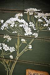 Nádoby - Okrúhly botanický podnos - 10981388_