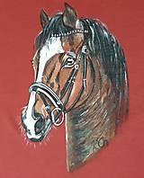 Oblečenie - Pánske tričko maľované,  koník - 10984861_