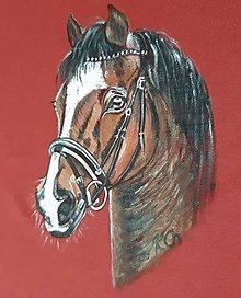 Oblečenie - Pánske tričko s koňom - 10984861_