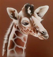 Obrazy - Žirafka (Namaľovaná) - 10988787_