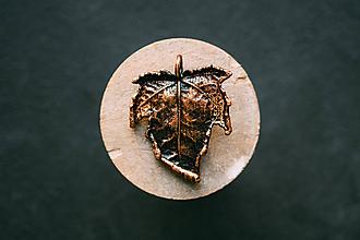 Náhrdelníky - Prívesok javor tatarský patina - 10994337_