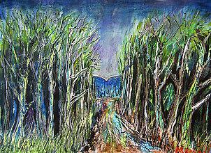 Obrazy - Večerný les - 10999786_